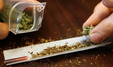 Cannabis : le débat est clos